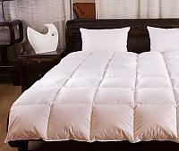 Одеяло пуховое Argelia