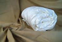 Купить одеяло Silk Dragon Exclusive, всесезонное